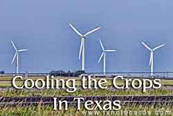 Cooling Crops in Texas