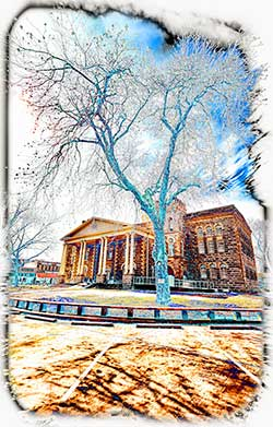 Teal Tree Courthouse
